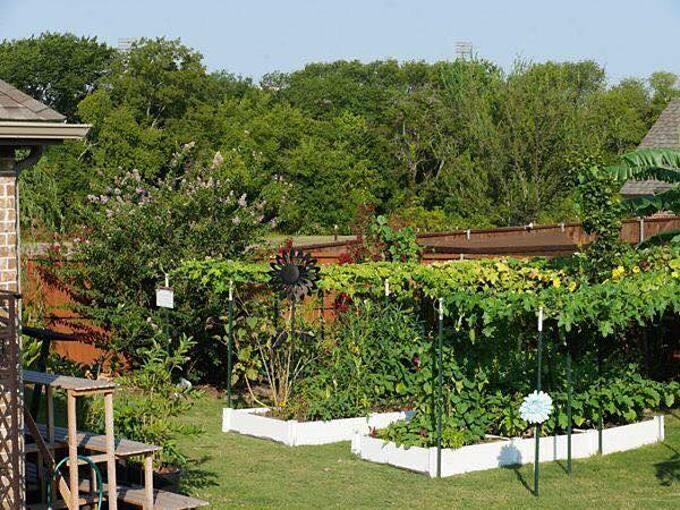 Kể từ khi mẹ của Sally chuyển đến, khu vườn được nâng cấp về số lượng cây trồng. Mẹ cô thậm chí còn quy hoạch 2 khu vườn độc lập: vườn rau của bà và vườn chung.