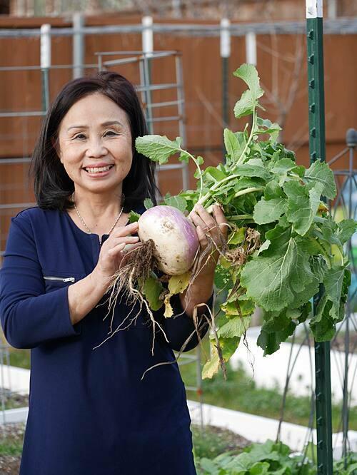 Sally có mẹ là người Việt, đã định cư tại Mỹ được gần 40 năm. Bà sống ở Mississippi. Sally luôn muốn đón mẹ về sống chung với cô nhưng mỗi lần đưa ra ý kiến, cô đều nhận được câu trả lời là: Không. Sau 4 năm kiên trì năn nỉ cùng lời hứa sẽ tạo cho bà một vườn cây đẹp hơn khu vườn của bà ở Mississippi thì mẹ Sally mới thay đổi quyết định.