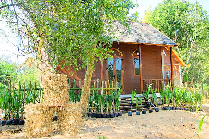 [CaptionTổng kinh phí ước tính để hoàn thành khu văn hoá rộng 10 ha với các hạng mục: Phục dựng Giếng Tiên; phục dựng nhà truyền thống của đồng bào Khmer; bảo tàng trưng bày hiện vật của đồng bào Khmer; phục dựng các lễ hội của đồng bào Khmer; ẩm thực, văn hóa, âm nhạc của người Khmer; phục dựng các tượng Phật; khu vui chơi, giải trí, trò chơi dân gian; phục dựng ghe Ngo, ghe Cà Hâu...