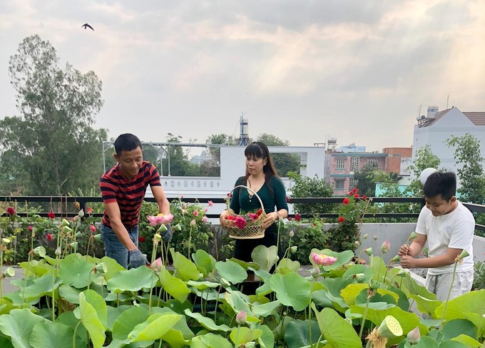 Gia đình anh Huynh, chị Gấm (cùng 48 tuổi) bắt đầu làm nông dân đô thị khoảng nửa năm nay.