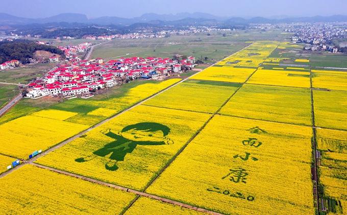 Mùa xuân đến sớm trên khắp Trung Quốc - 1