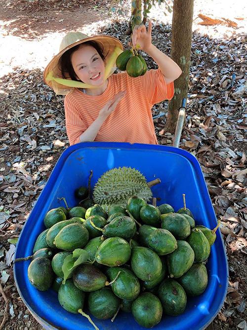 Lý Nhã Kỳ khi thu hoạch trái cây ở trang trại của mình tại Vũng Tàu.