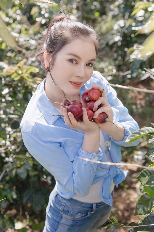 Lý Nhã Kỳ thu hoạch cà chua thân gỗ tại trang trại ở Đà Lạt.
