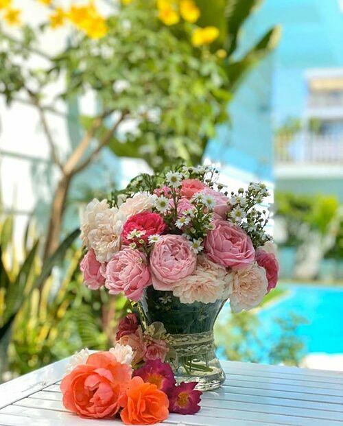 Sân thượng nhà Quyền Linh không lúc nào thiếu vắng hương thơm. Đây không chỉ là nơi cung cấp nguồn nông phẩm cho bữa ăn hàng ngày mà còn là chỗ lý tưởng để các thành viên trong nhàthư giãn sau một ngày làm việc và học tập. Dạ Thảo thường hái hoa trong vườn nhà để cắm hoặclàm trà. Vào dịp sinh nhật của vợ hoặc các con, Quyền Linh cũng ra vườn hái hoa và đem tặng.