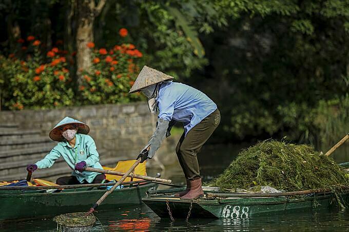 Tranh thủ đợt vắng khách, những công nhân vớt rong làm sạch môi trường. Theo những người này nước trên sông thời gian qua rất trong do phải ngừng hoạt động vì dịch Covid-19.