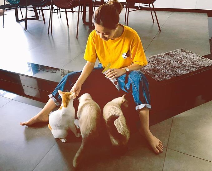 Ca sĩ Hoàng Thùy Linh chơi đùa cùng mèo cưng.
