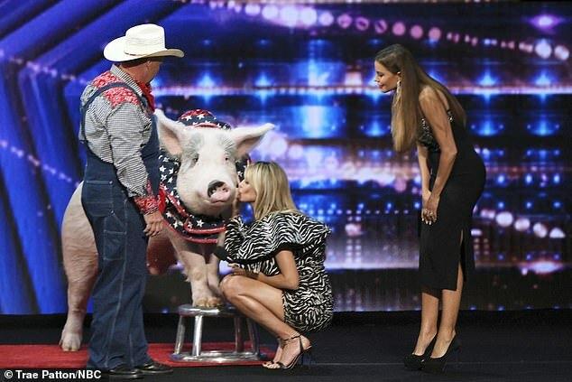 Heidi Klum hôn lợn mẹ.