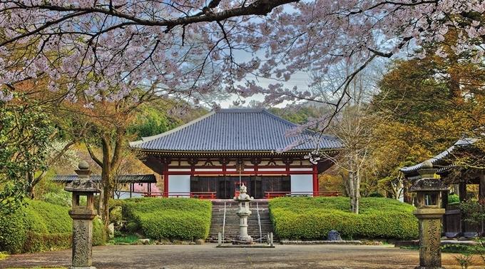 Bên cạnh đó, vì có lịch sử lâu đời nên các gian đền ở đây mang kiến trúc cổ và một khu vườn trồng đầy cây phong, tạo nên bức tranh phong cảnh đẹp. Đây là một trong những vườn hoa đáng để ghé thăm vào bất cứ mùa nào trong năm ở vùng Kansai.