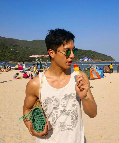 Ngô Vĩ Hào sở hữu vẻ đẹp nam tính, nụ cười tỏa sáng. Trong phim, nhân vật của anh có nhiều fan nữ, được mệnh danh là tiểu Ngô Ngạn Tổ với nhiều nét hao hao nam tài tử lừng danh. Ngô Vĩ Hào tiết lộ, một trong những sở thích của mình là tắm nắng vào mùa hè trên những bãi biển cát trắng ở Hong Kong để có làn da rám nắng.