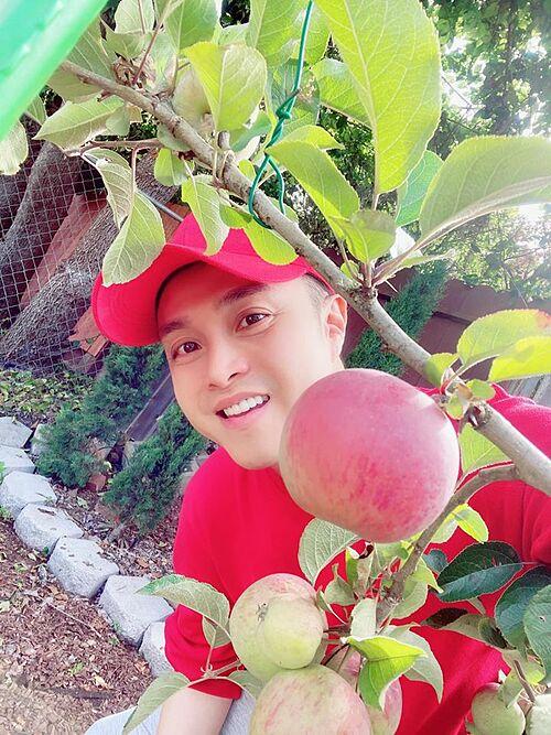 Ca sĩ Nhật Tinh Anh hào hứng khoe vườn cây sai trĩu quả trong khuôn viên sống tại Mỹ.