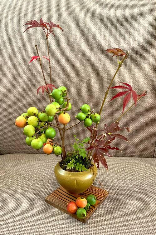 Bình hoa độc đáo được cắm ngẫu hứng từ một cành ổi và vài cành lá phong cắt từ vườn nhà.