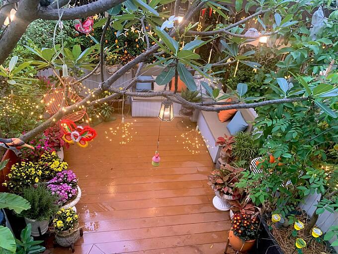 Buổi tối, khu vườn lung linh hơn nhờ hệ thống dây đèn được bố trí phía trên khu vườn.