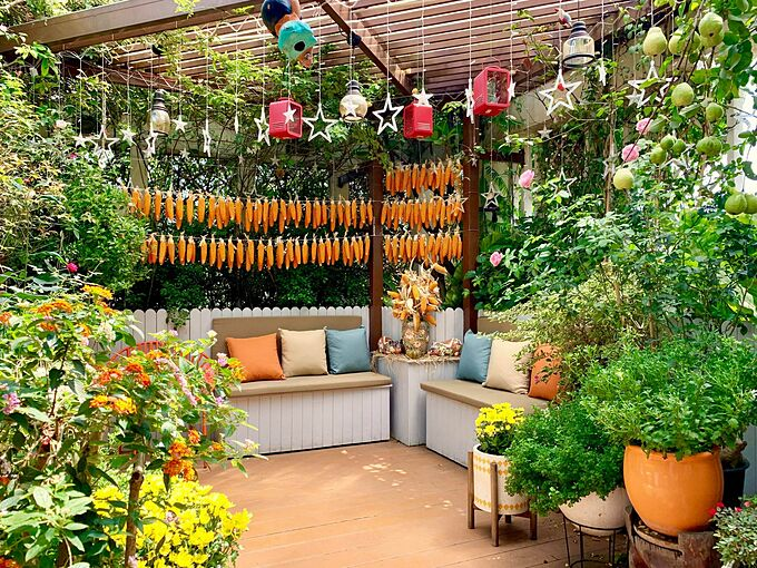 Chị Nguyễn Thanh Hiền, CEO công ty xuất nhập khẩu tại TP HCM cũng là một nông dân sân thượng có tiếng trong các hội/nhóm thích trồng cây, làm vườn. Bởi chị đã có hơn 10 năm kinh nghiệm làm vườn trong nhà phố và sân thượng khoảng 200 m2 của gia đình chị được ví như một vựa trái cây, rau củ bốn mùa xum xuê.