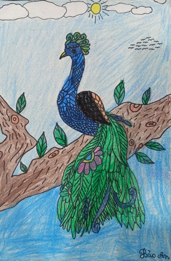 Con công đầy sắc màu qua nét vẽ của Bảo An. Thông qua bức tranh này, bé mong mọi người cùng bảo vệ thiên nhiên để cho các loài động vật có môi trường trong lành.