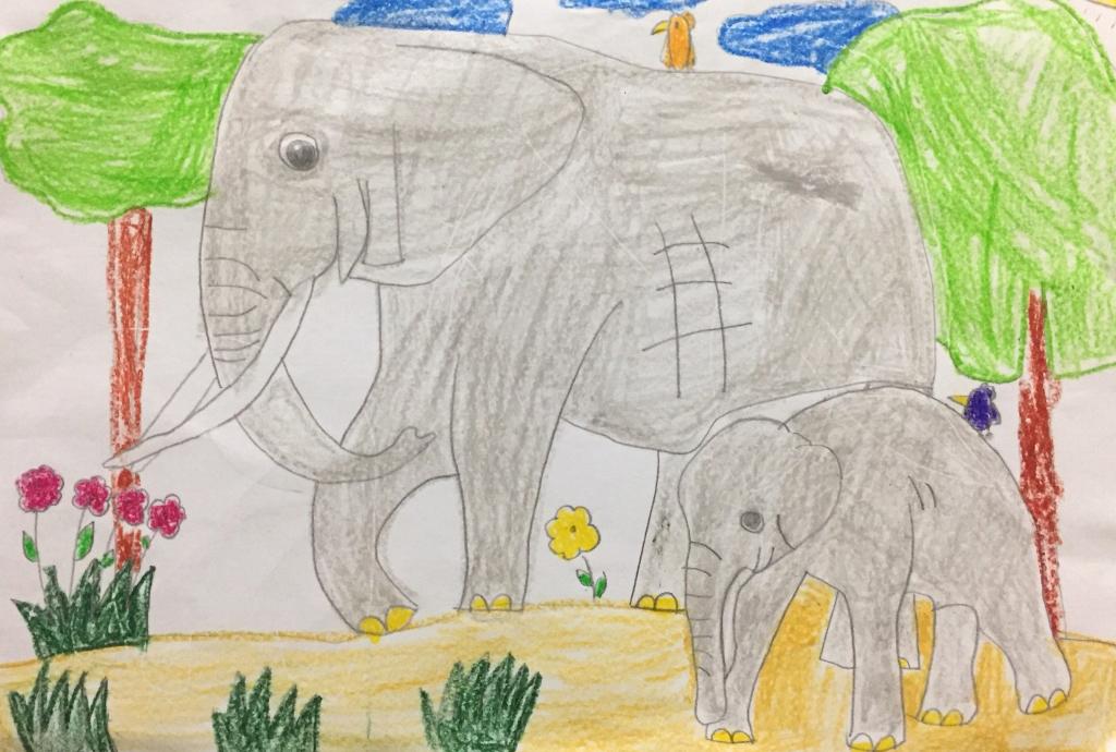 Trong mắt bé Nhật Anh, voi là loài động vật thông minh, có khả năng ghi nhớ tốt, còn biết làm toán, vẽ tranh... Cũng chính vì vậy mà voi bị bắt đem đi biểu diễn. Qua những chương trình, bé thấy rằng, những chú voi bị con người săn bắt, lấy ngà trái phép... Bé mong những chú voi sẽ được sống trong những khu rừng xanh, tự do kiếm ăn.