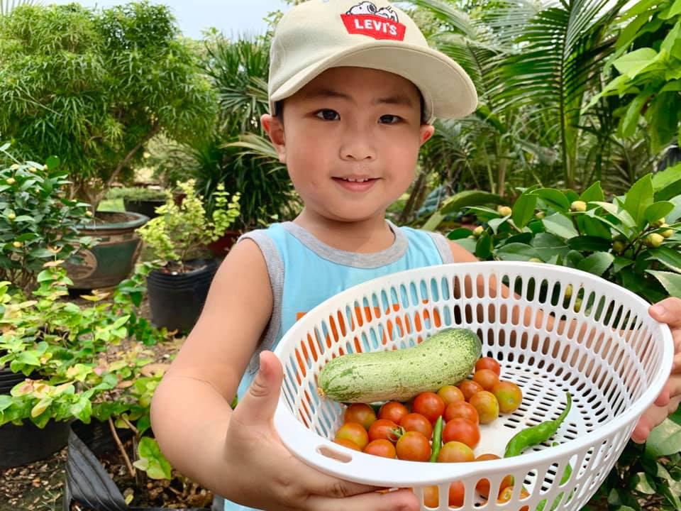 Nhóc tỳ thích ra vườn hái cây trái cùng mẹ. Mỹ Lệ vui vì con trai yêu thích cuộc sống hướng về thiên nhiên.