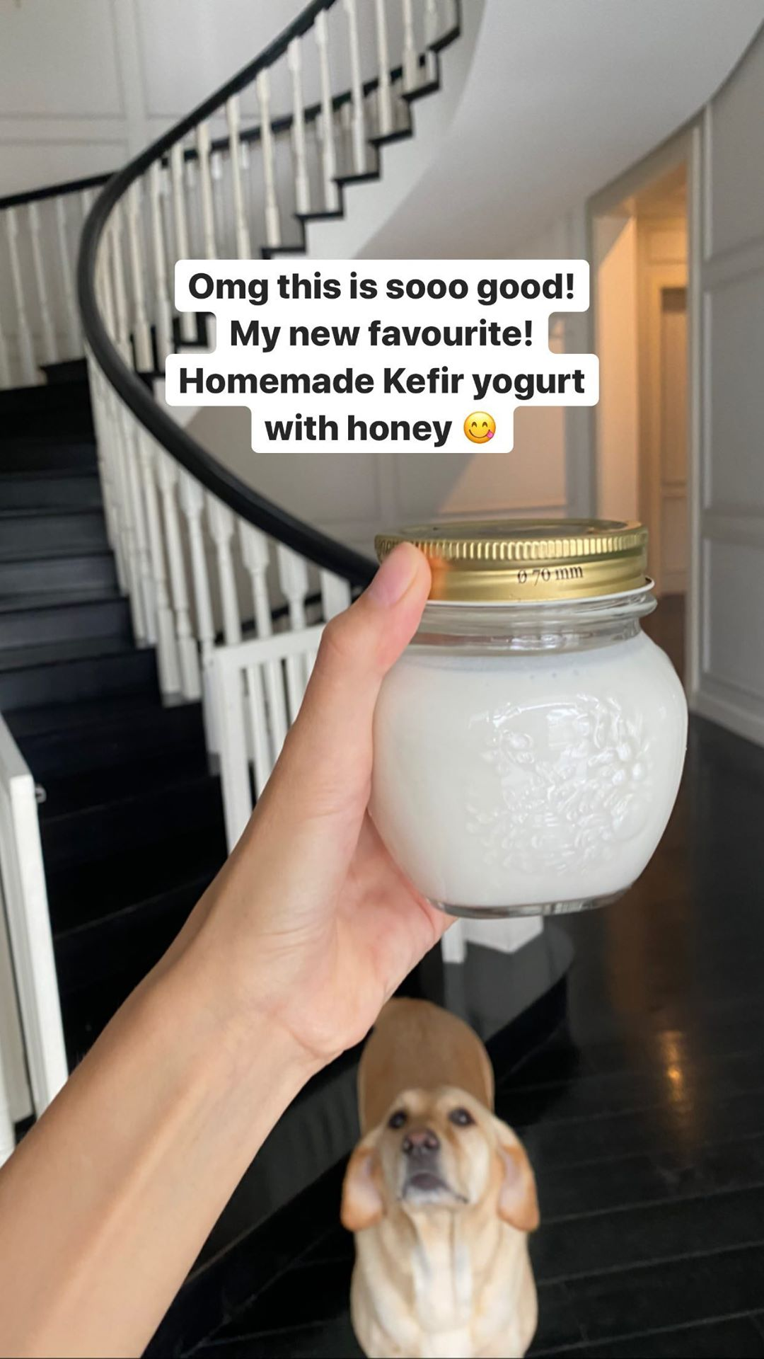 Tăng Thanh Hà mê mẩn món sữa chua Kefir