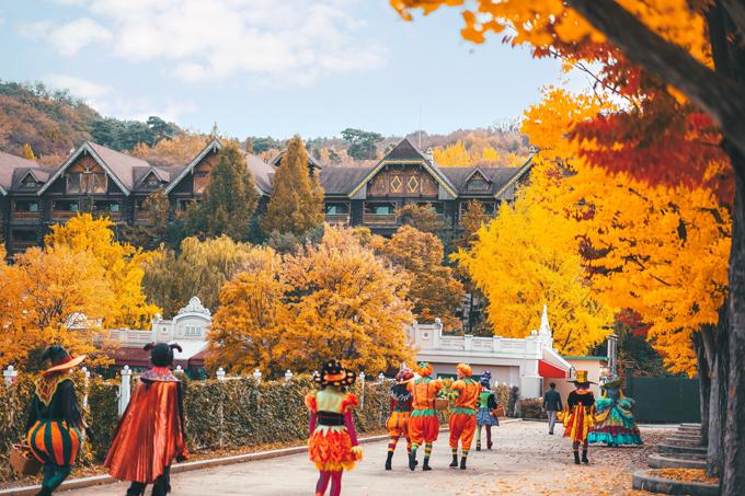 Công viên Everland được biết đến là công viên giải trí lớn nhất Hàn Quốc. Các địa điểm tham quan ở đây được trang trí dễ thương theo phong cách cổ tích, lại được phủ màu đỏ và vàng của lá. Ngay cả người lớn cũng mê mẩn vẻ đẹp nơi này.