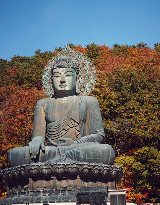 Ở đây, tôi ấn tượng với tượng Phật bằng đồng cao tráng lệ, đứng sừng sững, ngồi trên bệ sen cao 14 mét. Đây là biểu tượng của hy vọng về sự thống nhất của Bắc và Nam Triều Tiên, được đặt cho nó biệt danh là 'Great Unification Buddha, thầy giáo trẻ chia sẻ.