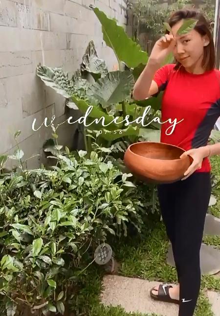Tóc Tiên trồng trà trong vườn, pha uống mỗi ngày - 2