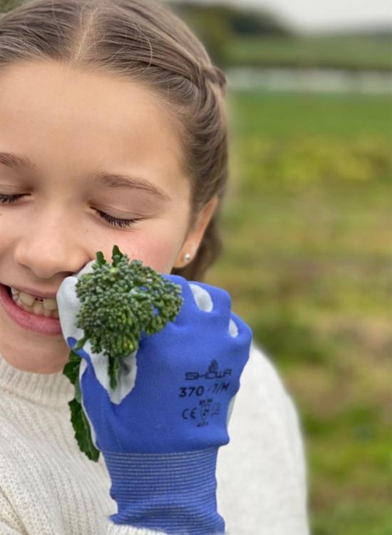 Cô nhóc nhà Becks thích thú với trải nghiệm tự tay hái rau trái.