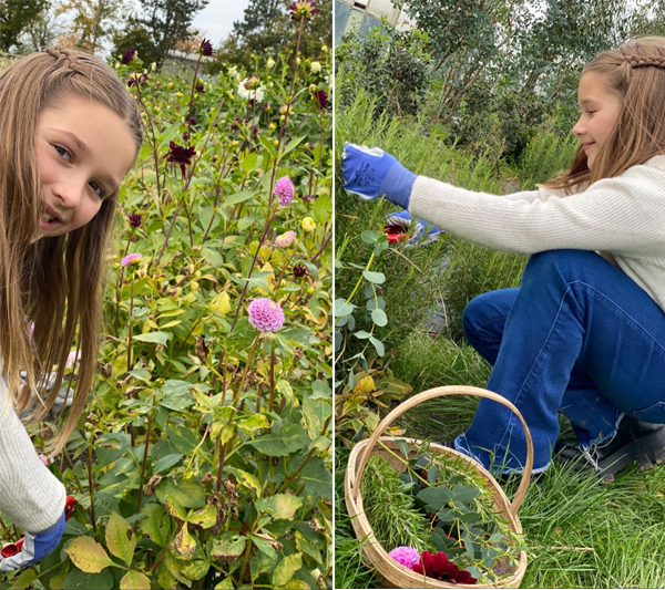 Con gái Becks vui vẻ, hồn nhiên hái hoa