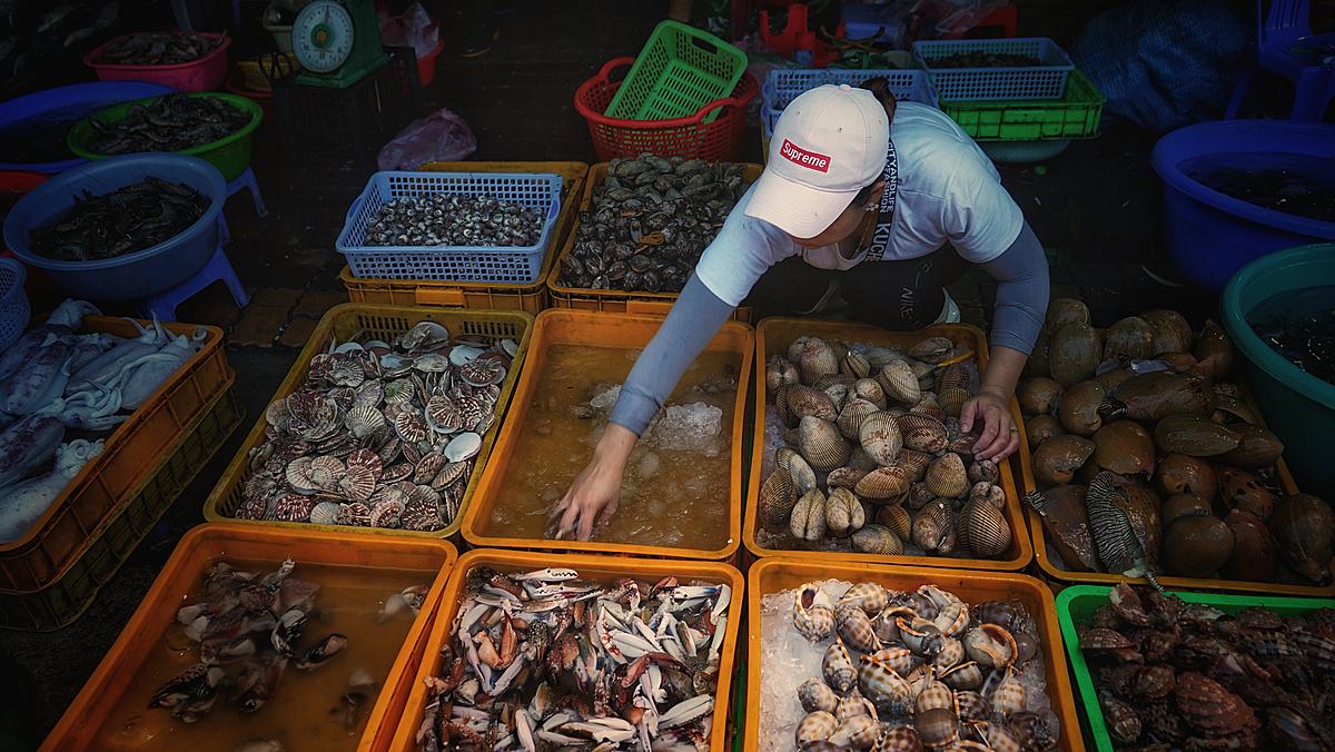 Chợ Lưới ở Hồ Tràm là địa chỉ bạn có thể tìm mua nhiều loại hải sản tươi sống với giá cả phải chăng. Ảnh: shutterstock.