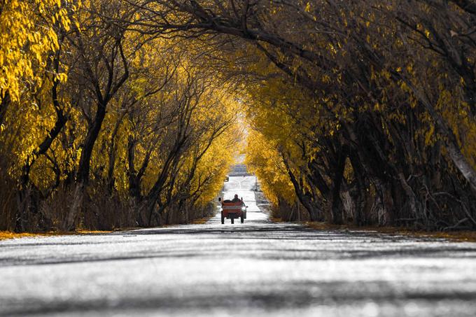 Tân Cương có biên giới với Nga, Mông Cổ, Kazakhstan, Kyrgyzstan, Tajikistan, Afghanistan, Pakistan và Ấn Độ. Đây cũng là một trong những khu vực nổi tiếng với cảnh sắc tươi đẹp, hoang sơ nhưng người nước ngoài khá khó tiếp cận do các chính sách hạn chế của Trung Quốc. Thông thường, du khách cần giấy thông hành đặc biệt vào Tân Cương thông qua một công ty tour du lịch đặt tại nước này.