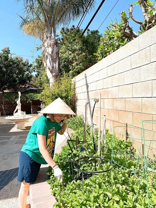 Thanh Thảo chăm sóc vườn cây.