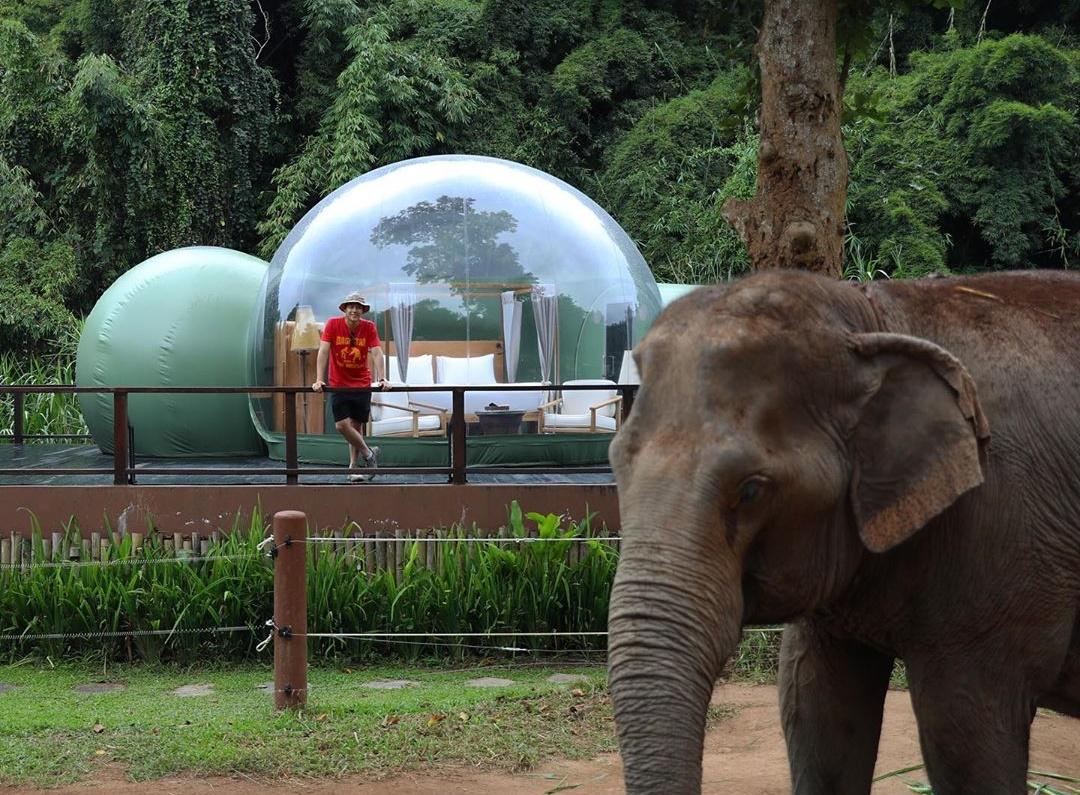 Resort Thái Lan nơi du khách ngủ cùng voi - 6