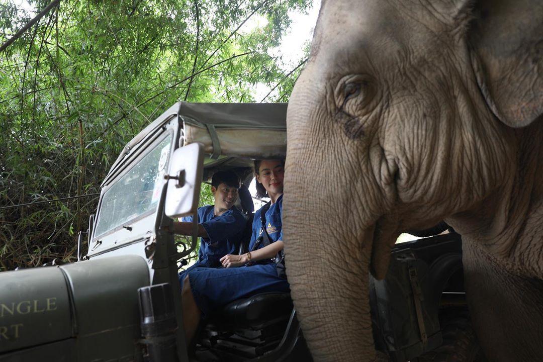 Resort Thái Lan nơi du khách ngủ cùng voi - 4