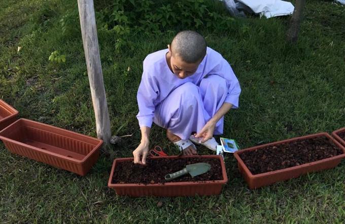 Bà Srirasmi Suwadee, vợ thứ ba của Vua Thái, làm đất, trồng rau trong chùa. Ảnh:Twitter.